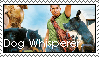 Dog Whisperer Stamp by kissfull