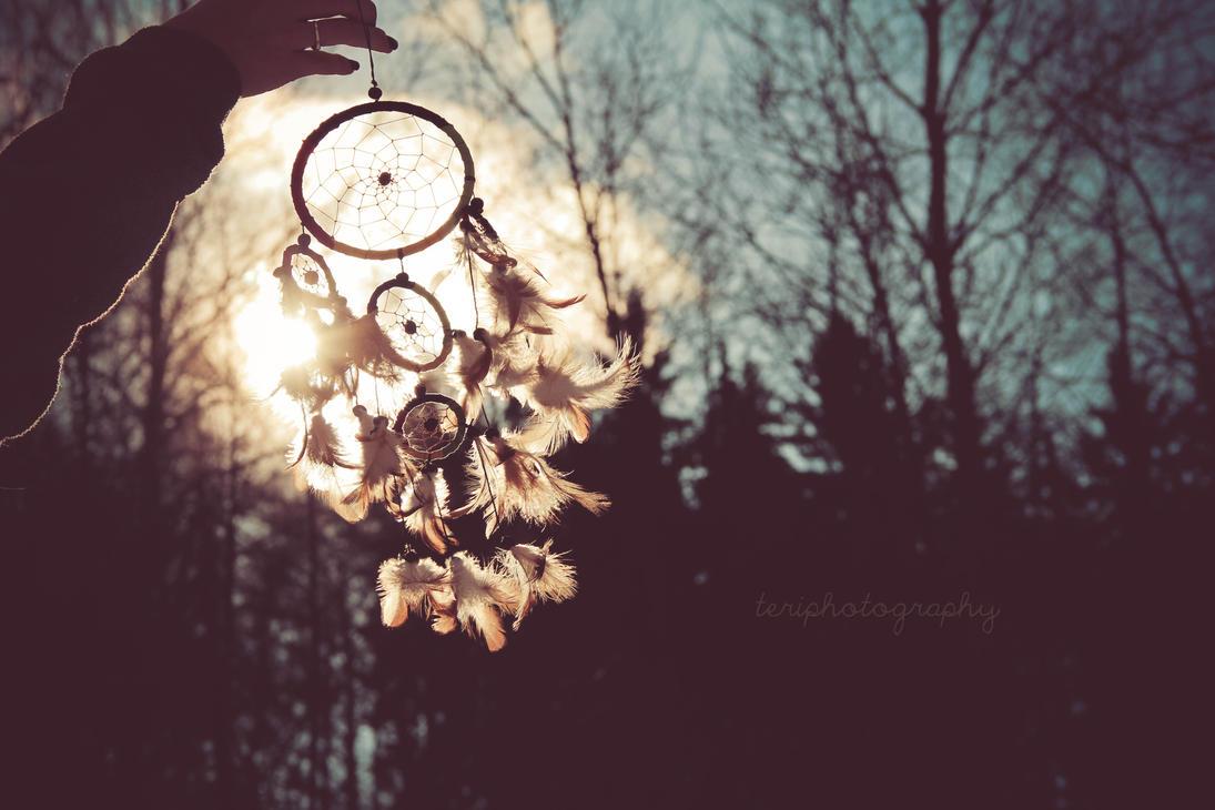 149/365 by photographybyteri