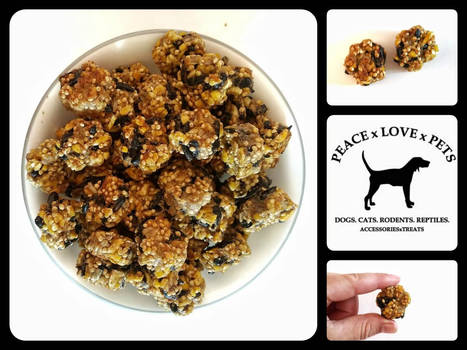 Homemade Rodent Treats: Seeds and Honey
