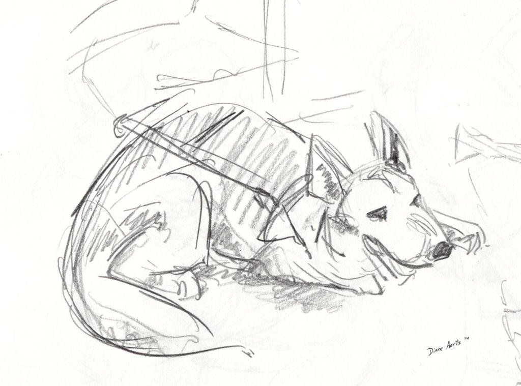 Guide dog by Di---Chan