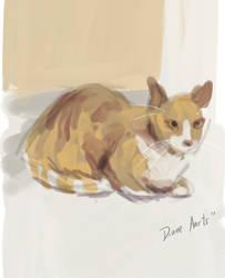 barncat by DianeAarts