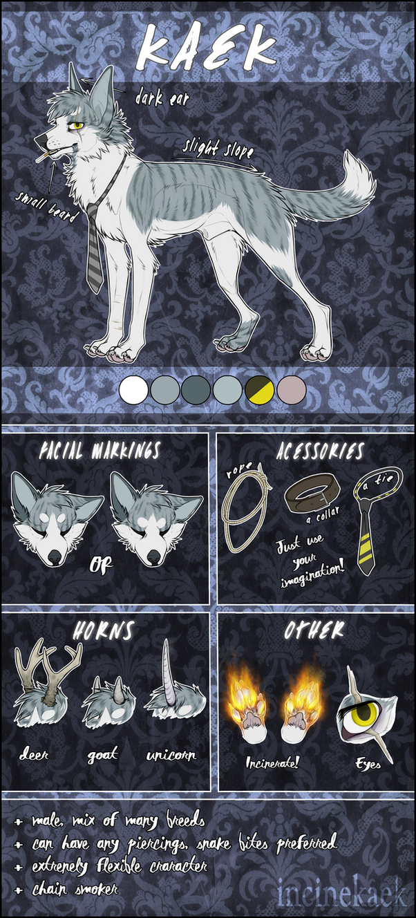 K A E K  :: reference sheet 2o16 by incinekaek