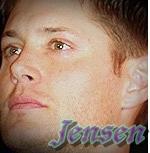 Jensen Icon by Destiel-Wincest