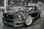 Carbon Mustang