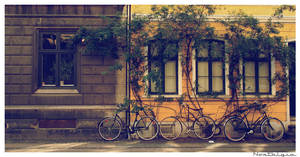 Nostalgia - Bikes