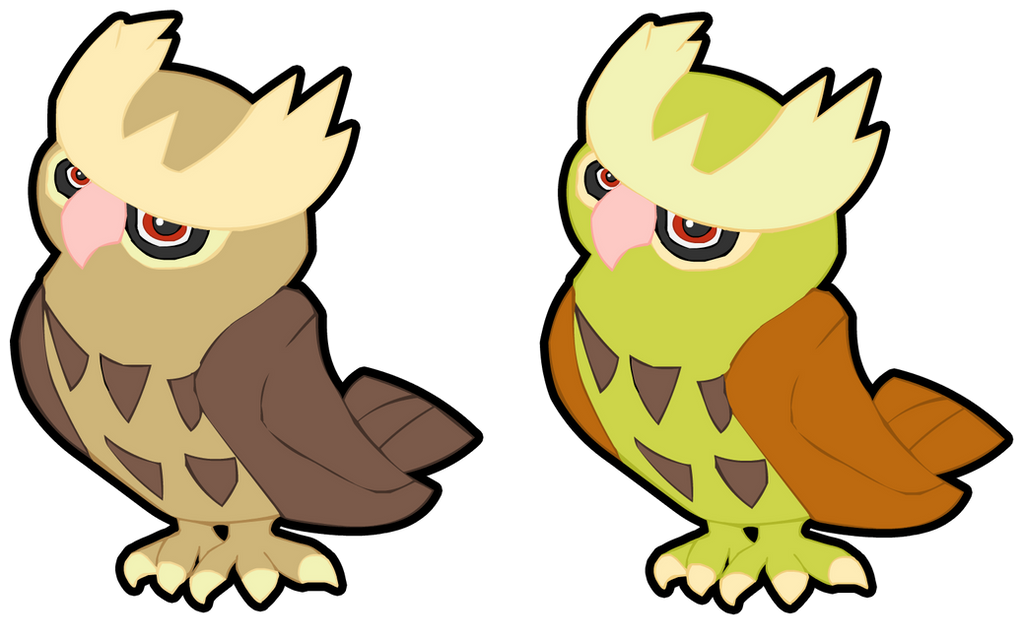 Related Keywords & Suggestions for Noctowl Shiny