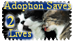 Adoption Saves 2 Lives Cat Version 1 by The-Lost-Hope
