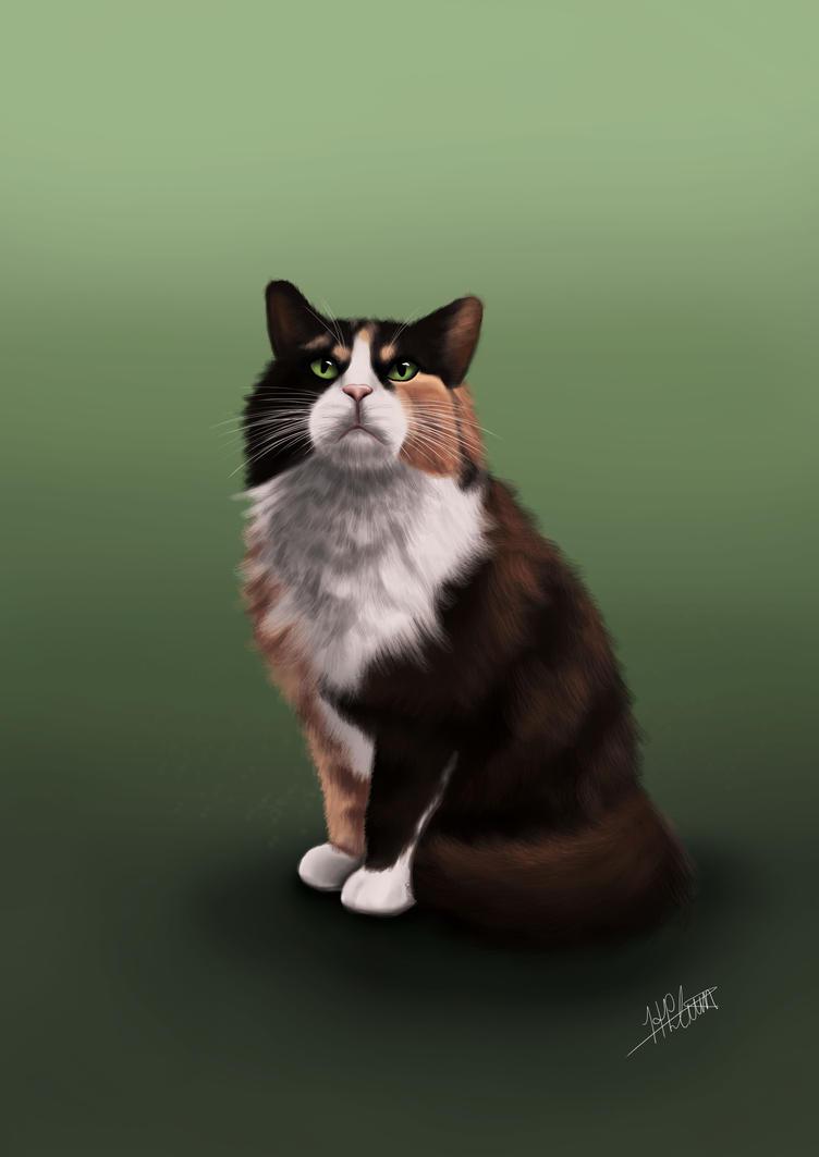 Cat Portrait - Furbie by Hailstorm11