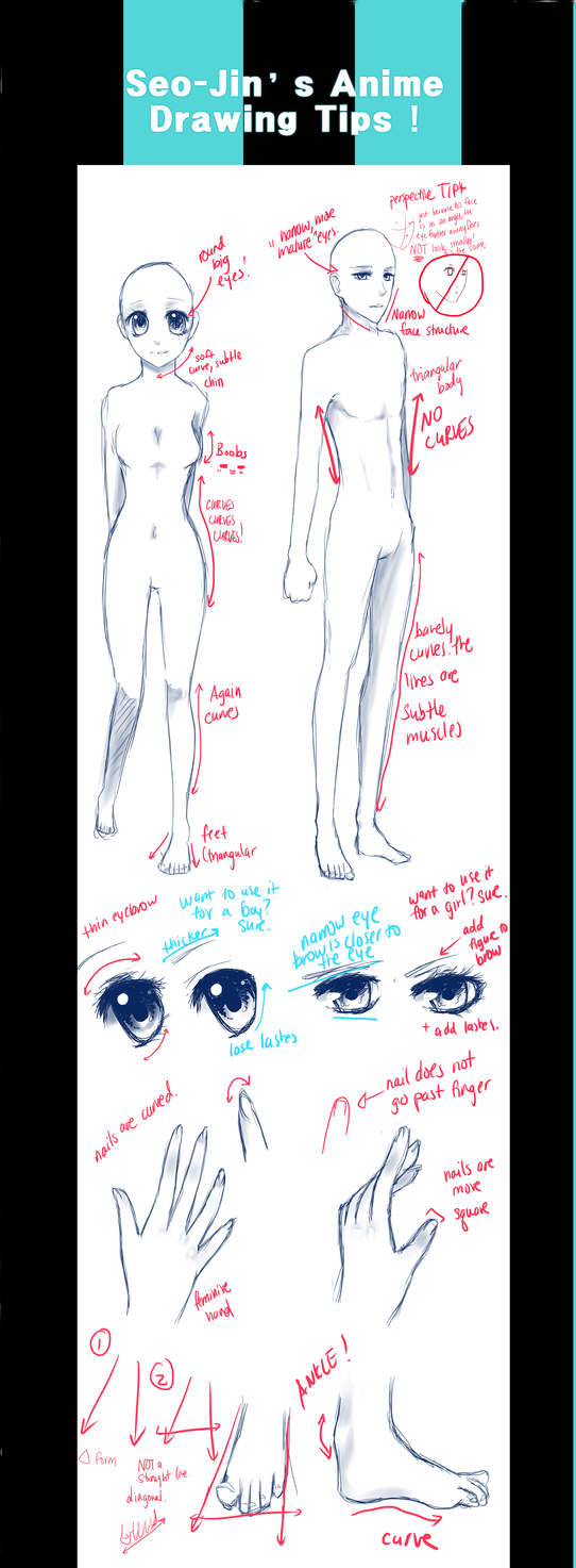Basic Anime Drawing Tips by Seojinni