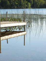 Dock Pristine by SundogTRF