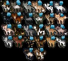 a-z cat ota - open by Hollyleafthewarriorc