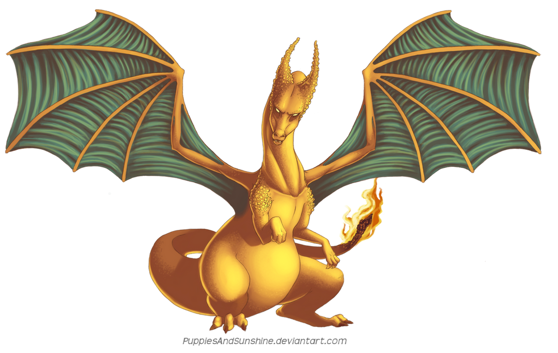 006 Charizard by PuppiesAndSunshine