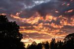 Fire in the Sky by xephera