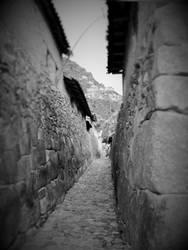 Narrow by xephera