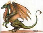 Dragon test by xHideFromTheSunx
