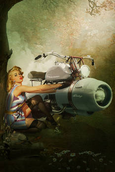 Harley Davidson pin up