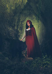 Petit Chaperon Rouge by Aste17