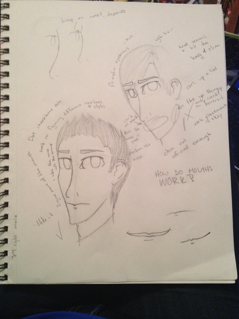 Newish style- Sketches and notes to myself by HpyGrl567
