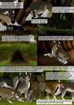 TNTC Page 5