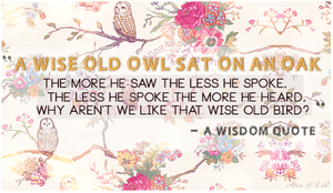 Everyday Quote #6: Wise Old Owl