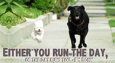 Everyday Quote #5: Run the day (Dogs) by sugarnote