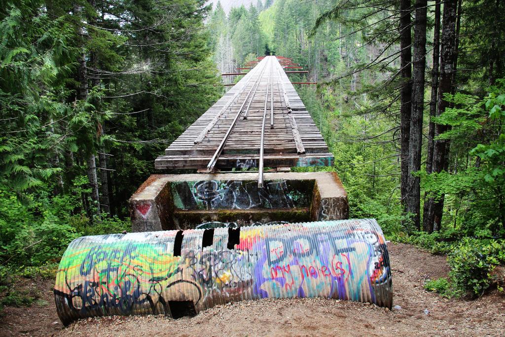 That Pacific Northwest Bridge by sugarnote