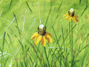 Flowers Oil on Canvas