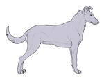 Lineart: Smooth Collie
