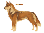 Auction: Gingersnap OPEN by Renegumnums