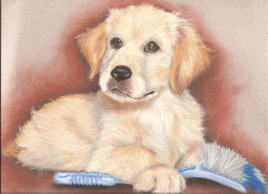La passion d'une Carpette Labrador_by_Qwaser55
