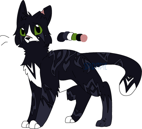 Cat Adoptable [OPEN] by Spiritpie