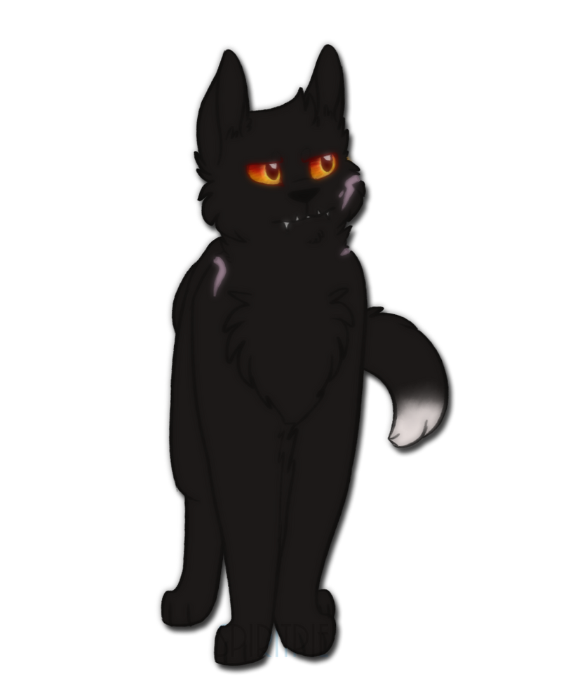 not as grumpy as you look by Spiritpie