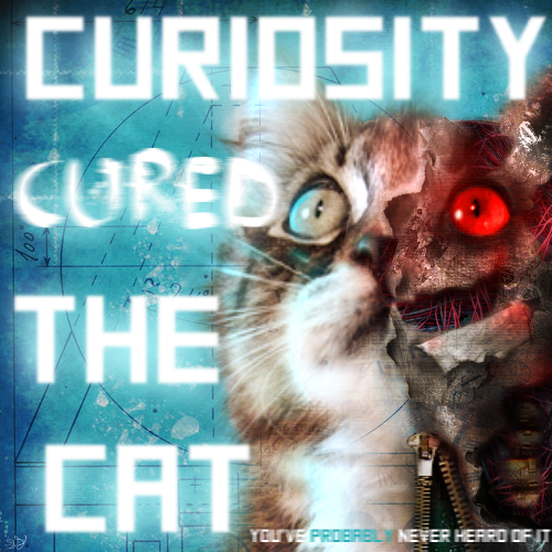 Curiosity Cured The Cat