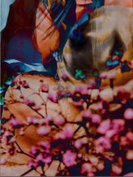 Flower  Me by SecretYY