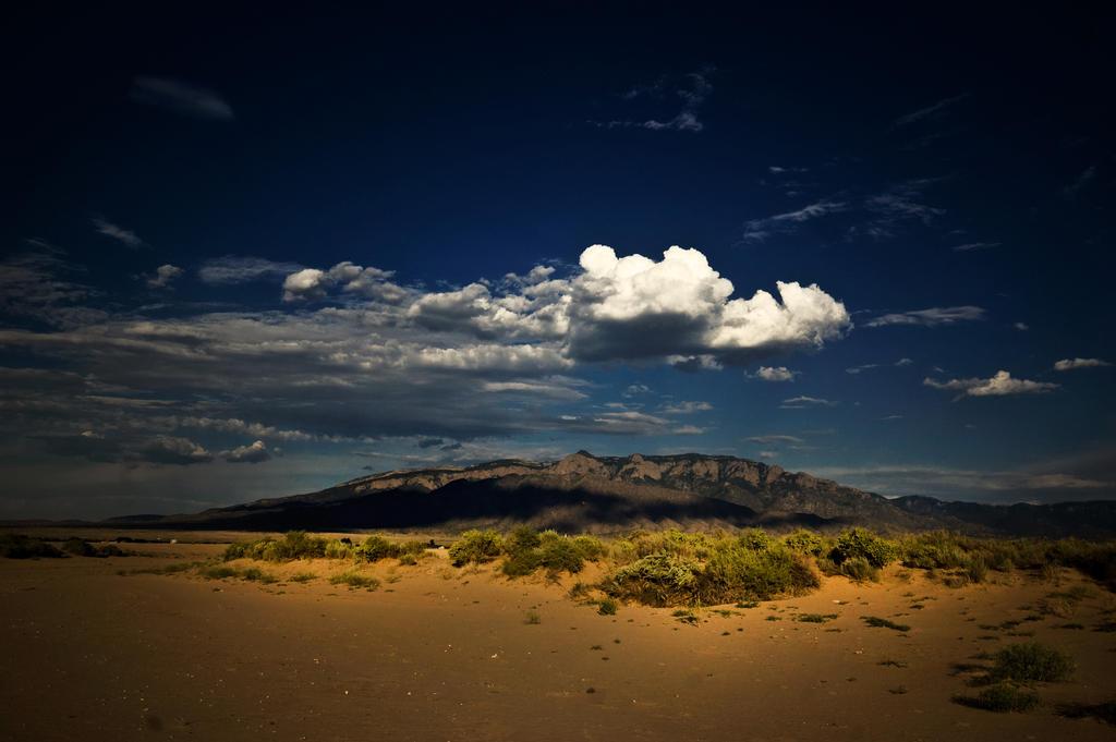 High Desert by Konijntje