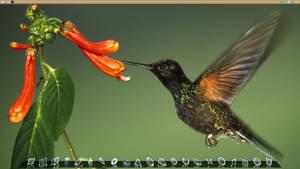 Desktop Bird