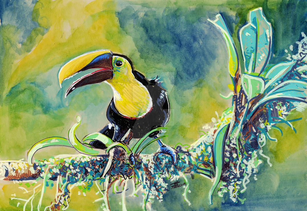 Toucan Jungle by dessinateur777
