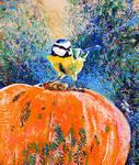 Pumpkin bluetit