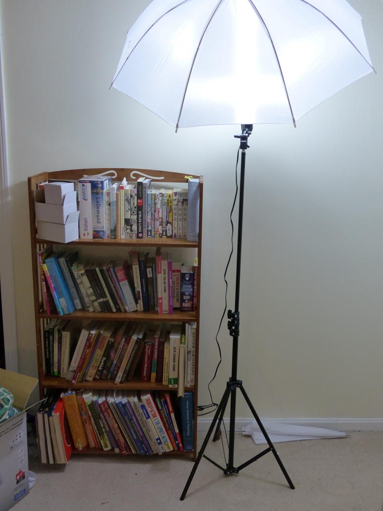 Bookshelf and Lamp by Hestia-Edwards