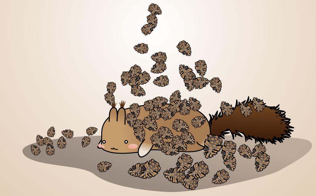 Squirrels day dream