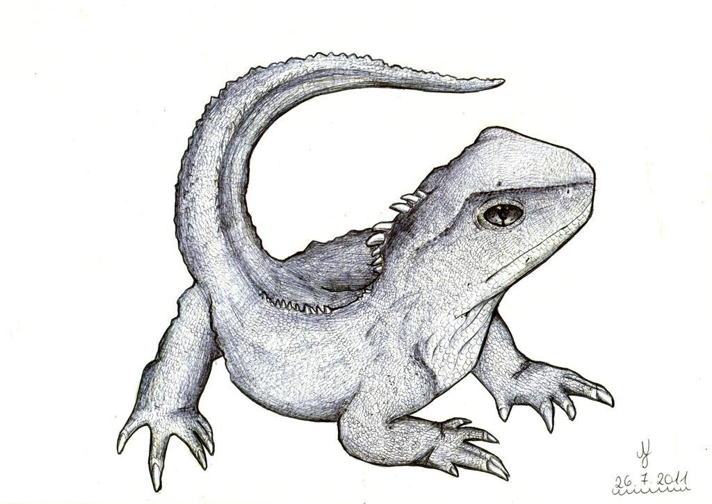 Bearded Dragon - Bartagame (ballpoint version) by Lexvandis