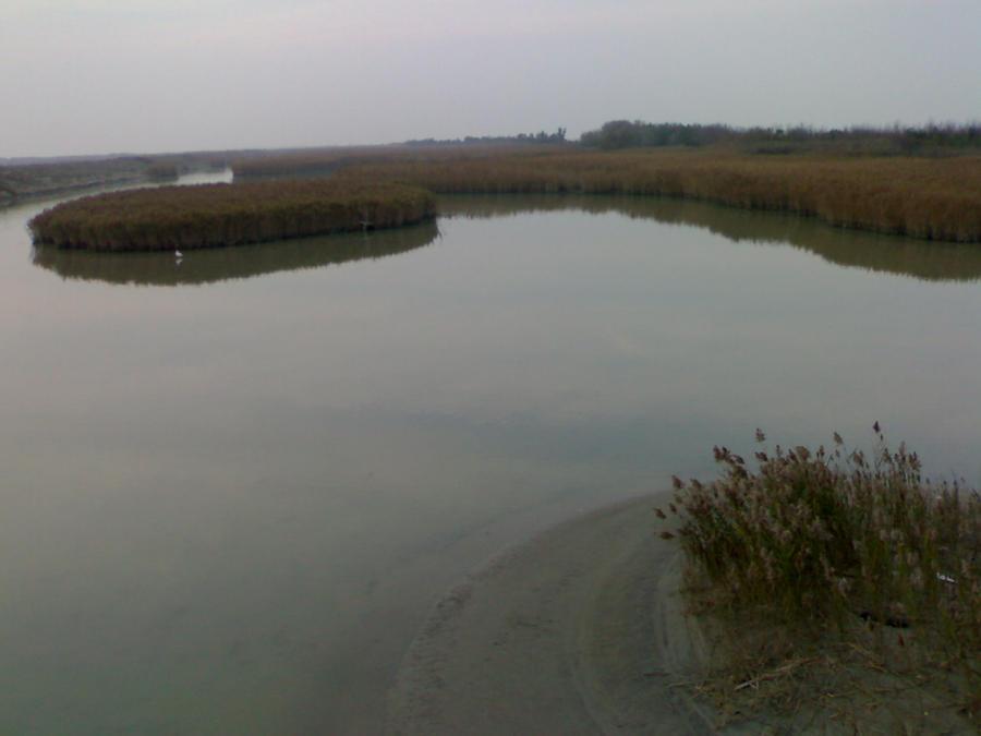 delta del po by stoi