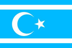 Turkmeneli flag by Still-AteS