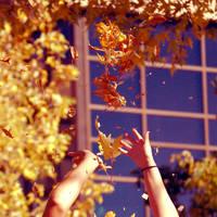 Autumn Touch by misspelledink