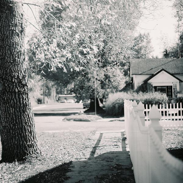 American Backyard by misspelledink