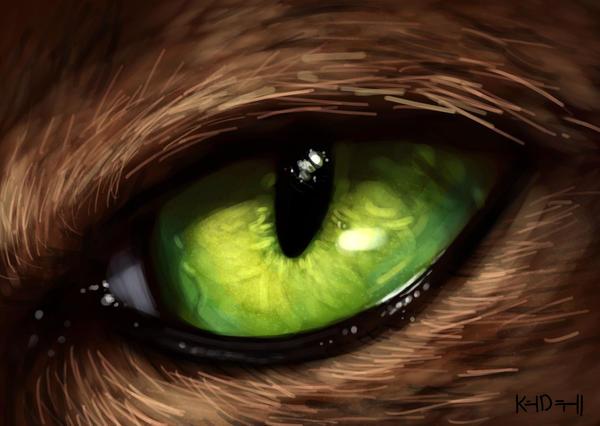 Cat eye by KimDingwall