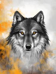 Amber Wolf by KimDingwall