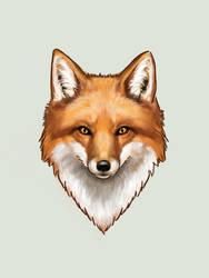 Hey Foxy by KimDingwall