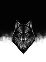 Wolf Dark by KimDingwall