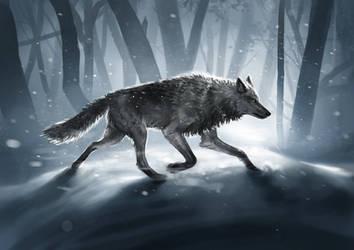 Snowtime Wolf by KimDingwall